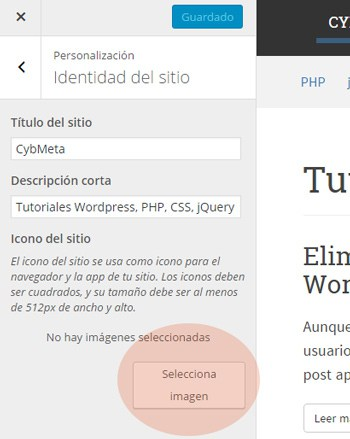 Site icon en el customizer de WordPress